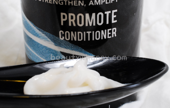 evolis_conditioner_in